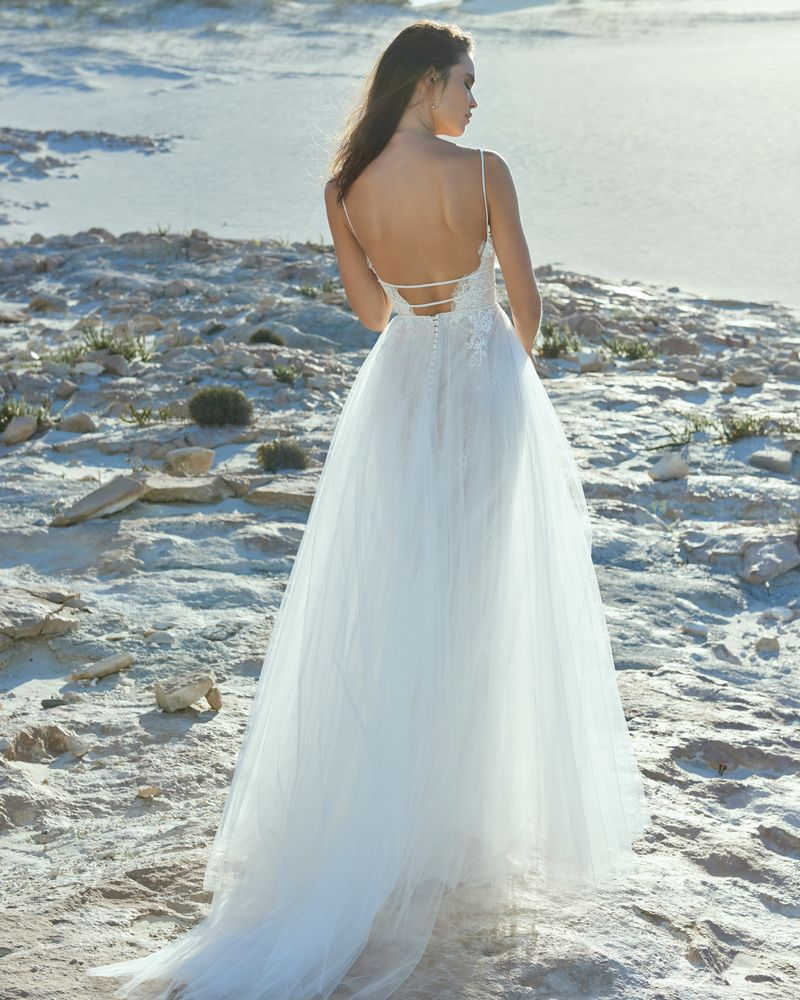 Back of Ava Wedding Dress from the Elbeth Gillis Luminescence 2019 Bridal Collection