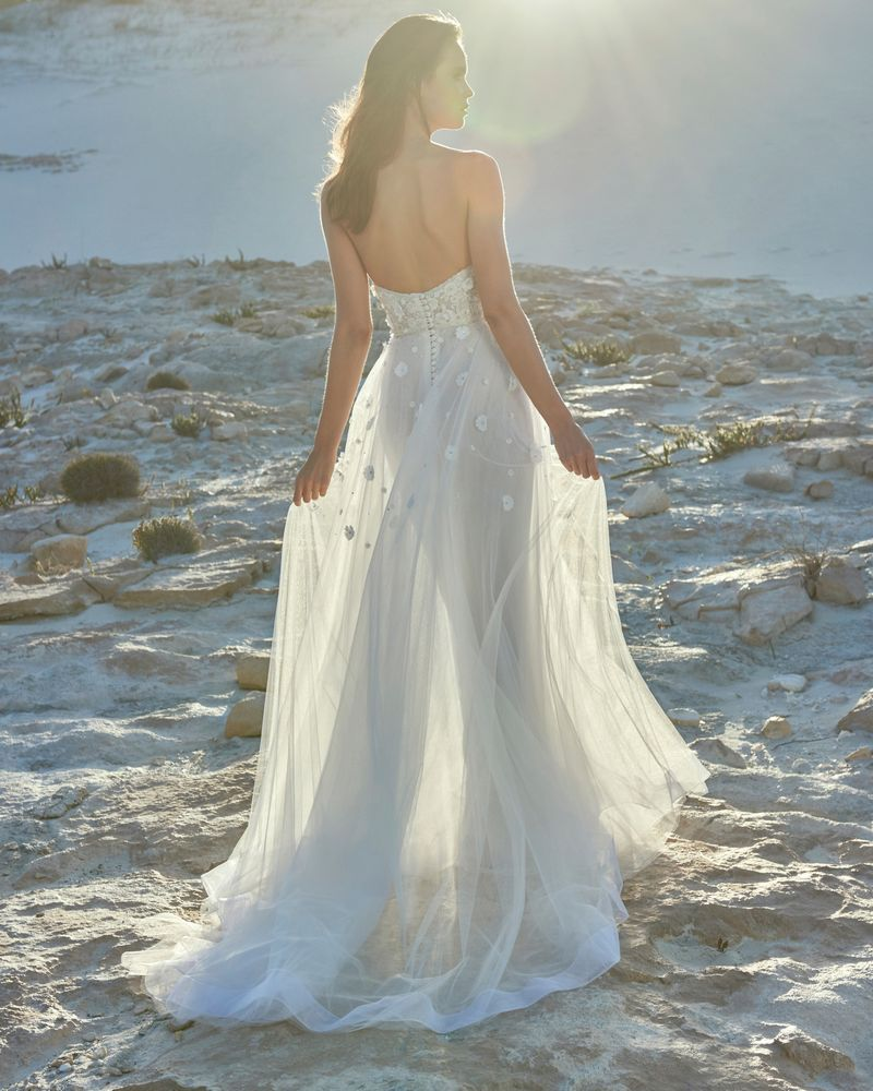 Back of Erika Wedding Dress from the Elbeth Gillis Luminescence 2019 Bridal Collection