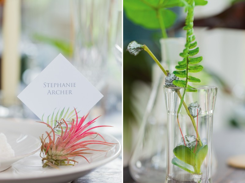 Tropical foliage and plants on wedding table