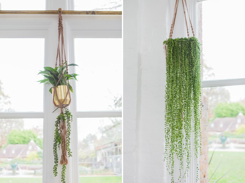 Hanging foliage decor