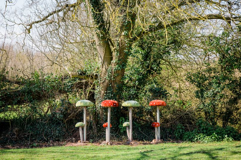 Giant Toadstools from The Prop Factory