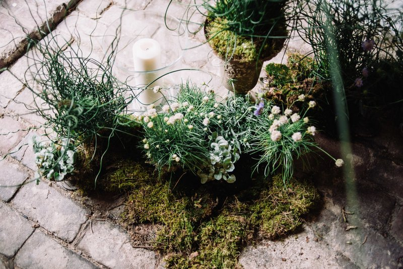 Small pots of wildflowers on top of moss