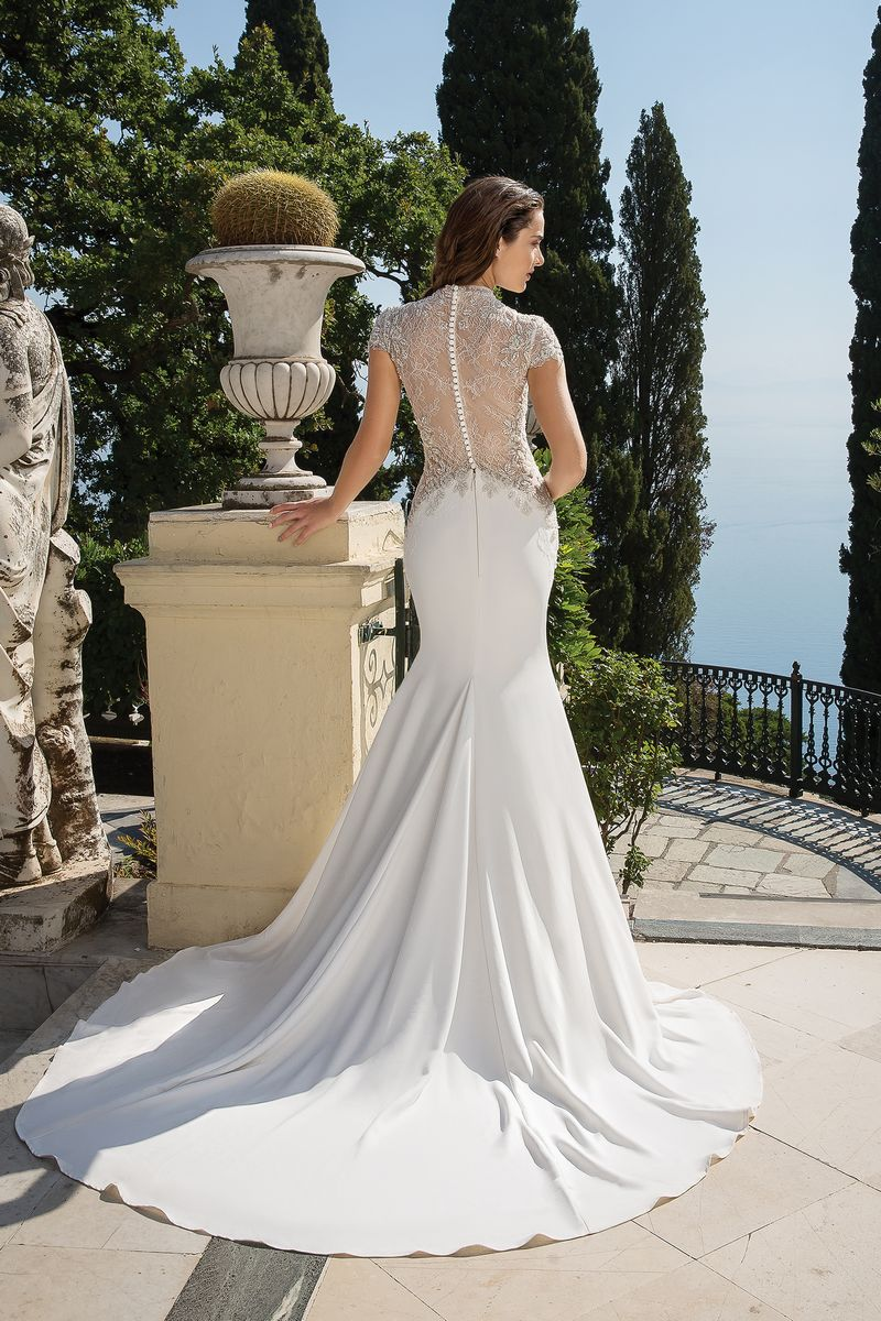 Back of Style 88073 Wedding Dress from the Justin Alexander Fall/Winter 2019 Bridal Collection
