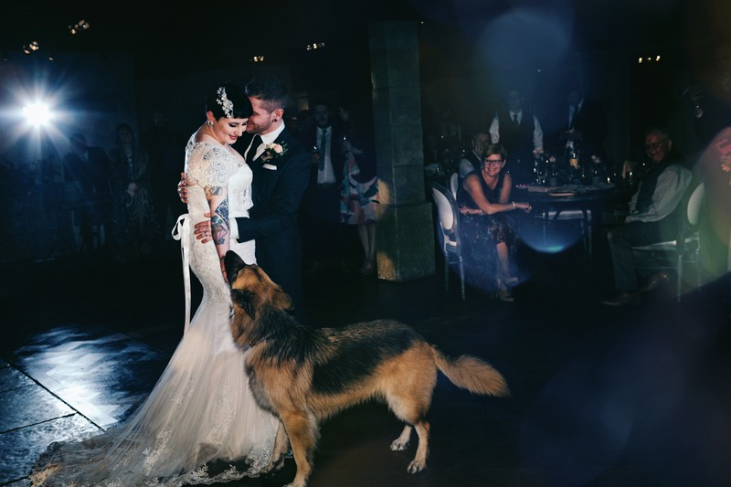 Dog with bride and groom on dance floor