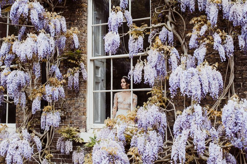 Bride looking out of window surrounded in wisteria
