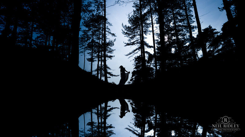 Silhouette of bride standing between trees with reflection in water - Picture by Neil Ridley Photography