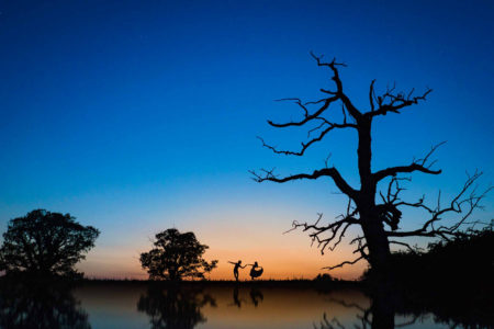 Silhouette of bride and groom dancing by trees at sunset - Picture by Alex Beckett Photography