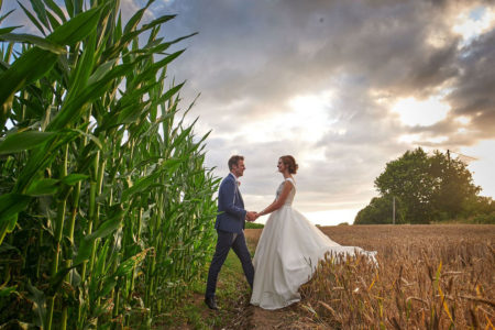 Bride and groom holding hands in corn field