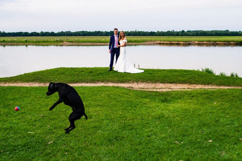 Dog jumping as bride and groom pose by lake - Picture by Jonny Barratt Photography