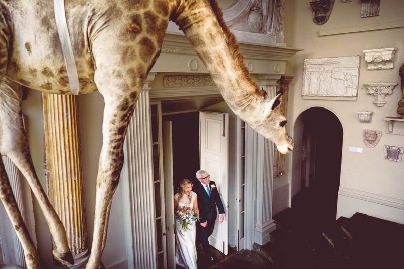 Bride walking into wedding ceremony at Aynhoe Park with giraffe hanging from ceiling - Picture by Andrew Billington Photography