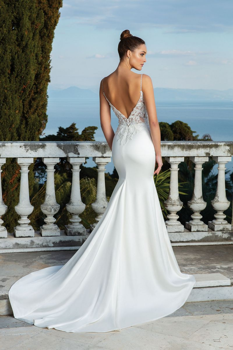 Back of Style 88119 Wedding Dress from the Justin Alexander Spring/Summer 2020 Bridal Collection