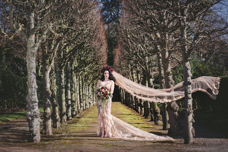 Bride standing between rows of trees
