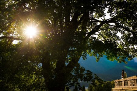 Bride and groom on balcony looking at sun shining through trees - Picture by Victor Duduca
