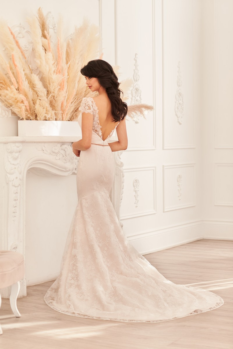 Back of Style 4956 wedding dress from the Paloma Blanca Fall 2021 Bridal Collection