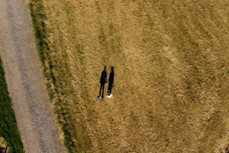 Picture taken by drone of bride and groom's shadows on field - Picture by Matt Selby Photography