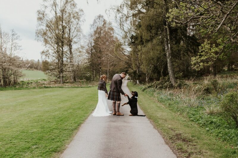 Bride and groom on path with dog giving groom his paw - Picture by Rebecca Rose Noller Photography